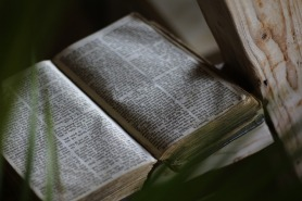 bible-873315_640